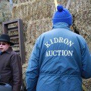 kidron-hay-auction-2