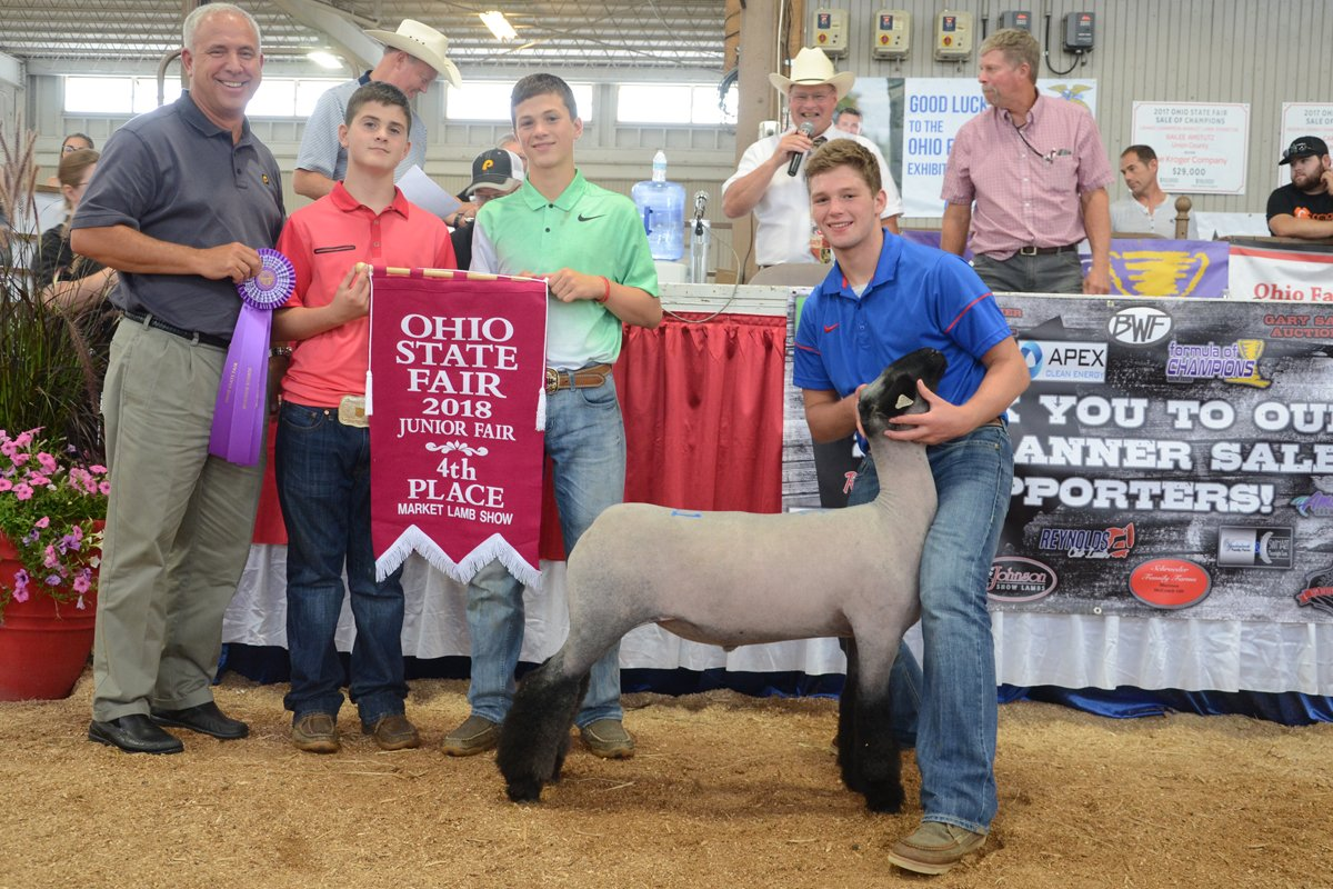 2018 Junior Market Lamb Sale Ohio Ag Net Ohios Country Journal