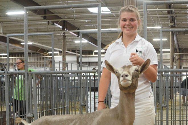 Junior Fair Dairy Goats 2018 – Ohio Ag Net   Ohio's Country