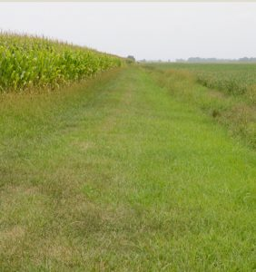 Paulding Co. fields
