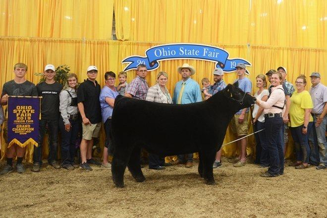 2020 Ohio State Fair Equine Show.2019 Ohio State Fair Junior Market Beef Show Results Ohio
