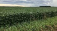 PFTour19_Day2_Stop12_IMG_3983