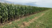 PFTour19_Day2_Stop14_IMG_3995