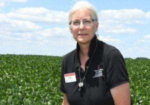 Anne Dorrance OSU Soybean Researcher Field Leader